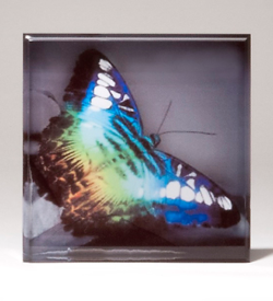 Sublimation Square – Personalize Your Award with Four-Color Reproduction